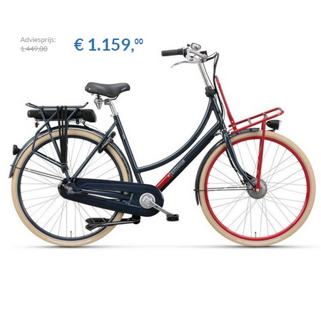 elektrische fiets batavus cnctd