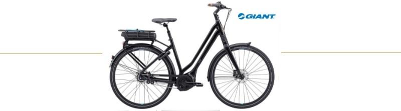 goedkope elektrische fiets heren